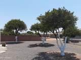 10829 Campana Drive - Photo 18