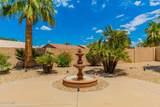 24529 Desert Flower Drive - Photo 36