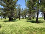 13440 Price Ranch Road - Photo 35