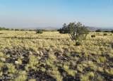 1003 Snake Ranch Road - Photo 3