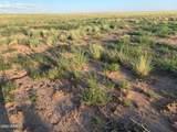 Arizona Rancheros #118 Lot 2 - Photo 17