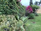 30 Paseo Tikal - Photo 39
