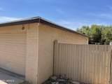 4911 Catalina Drive - Photo 12