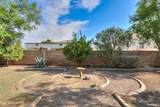 43205 Askew Drive - Photo 24