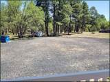 5291 Pinedale Wash Road - Photo 3