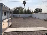 2440 Cactus Wren Street - Photo 15