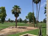 7344 Via Camello Del Norte - Photo 11