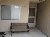 7344 Via Camello Del Norte - Photo 3