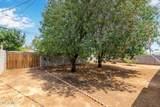 385 Comanche Drive - Photo 24