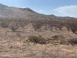 TBD Mineral Rd 5 Acres - Photo 11