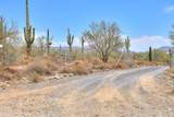 45025 Zorrillo Drive - Photo 73