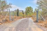 45025 Zorrillo Drive - Photo 74