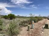 526 Camino De Nevada - Photo 5