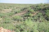 TBD Hunt Ranch Trail - Photo 14