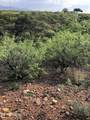TBD Hunt Ranch Trail - Photo 19