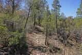 3208 Rainbow Ridge Drive - Photo 13