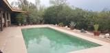 44620 Saguaro Blossom Lane - Photo 17