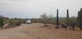 44620 Saguaro Blossom Lane - Photo 23