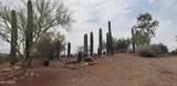 44620 Saguaro Blossom Lane - Photo 26