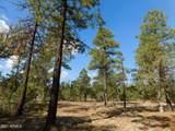 6541 Mogollon Trail - Photo 1