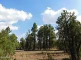 6541 Mogollon Trail - Photo 10