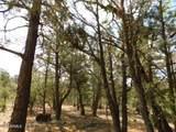 6541 Mogollon Trail - Photo 11