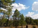 6541 Mogollon Trail - Photo 12