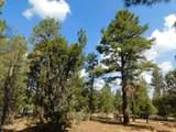 6541 Mogollon Trail - Photo 2