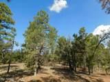 6541 Mogollon Trail - Photo 3