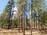 6541 Mogollon Trail - Photo 5