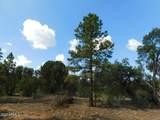 6541 Mogollon Trail - Photo 6