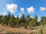 6541 Mogollon Trail - Photo 7