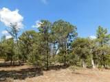 6541 Mogollon Trail - Photo 8
