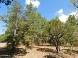 6541 Mogollon Trail - Photo 9