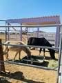 10523 Equestrian Drive - Photo 50