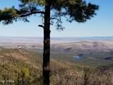 4560 Bald Mountain Road - Photo 11