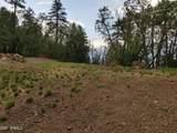 4560 Bald Mountain Road - Photo 44