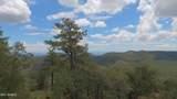 4560 Bald Mountain Road - Photo 58