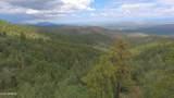 4560 Bald Mountain Road - Photo 59