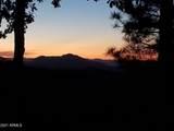 4560 Bald Mountain Road - Photo 6