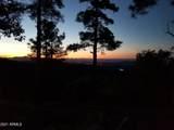4560 Bald Mountain Road - Photo 7