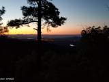 4560 Bald Mountain Road - Photo 8