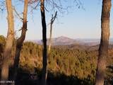 4560 Bald Mountain Road - Photo 9