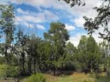 9046 Mogollon Trail - Photo 10