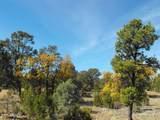 9046 Mogollon Trail - Photo 2