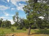 9046 Mogollon Trail - Photo 3