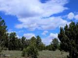 9046 Mogollon Trail - Photo 5