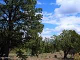9046 Mogollon Trail - Photo 6