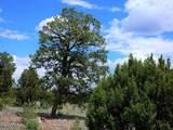 9046 Mogollon Trail - Photo 8