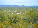 8035 Lone Mountain Road - Photo 3